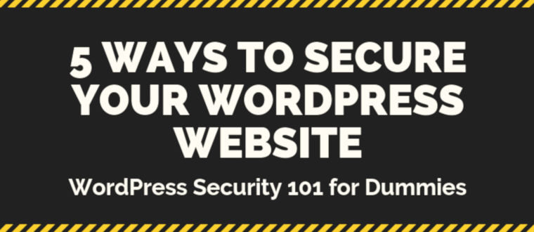 Simple 5 Ways to Secure Your WordPress Website – infographic