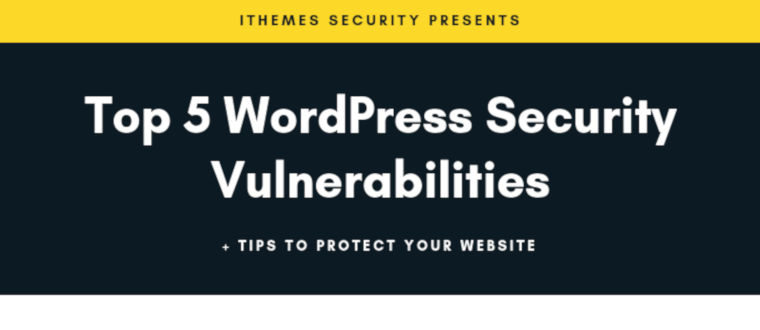 Top 5 WordPress Security Vulnerabilities + Tips To Protect Your Website – infographic