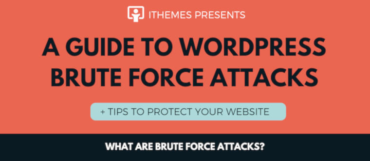 A Guide To Brute Force Attacks + Tips To Protect Your Website – infographic