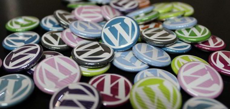 PRO Plan – WordPress Maintenance