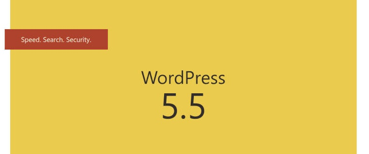 WordPress 5.5 is here, are you ready to jump in?