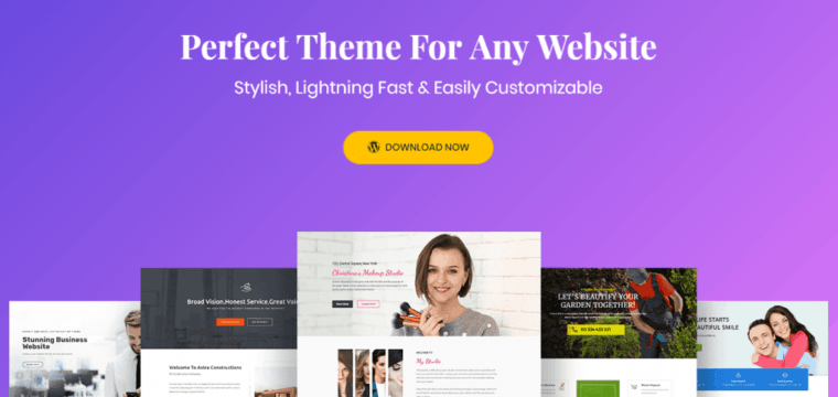 Astra Theme for WordPress – The Ideal Elementor Theme?