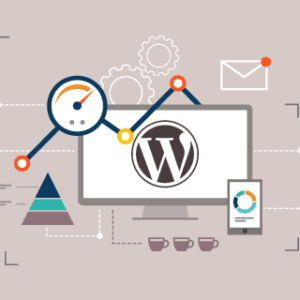 ENTERPRISE Plan - WordPress Support and Maintenance Plan for eCommerce Sites